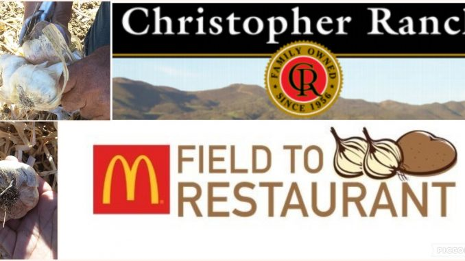 Sharing What I Learned on McDonalds Field to Restaurant Tour of Christopher Ranch in Gilroy, CA